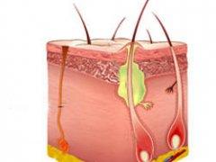 Фурункул на половой губе и его лечение