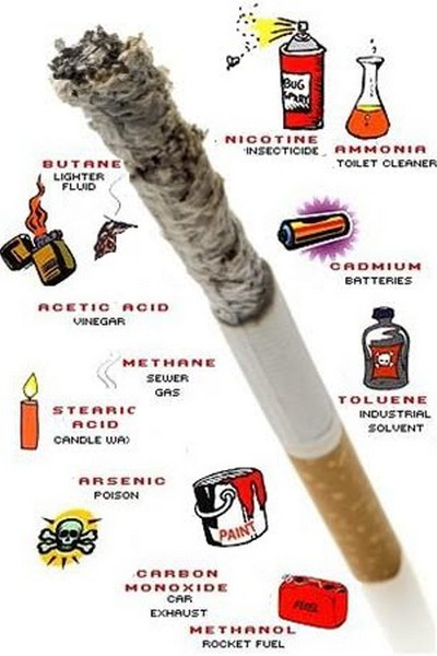 habit of smoking essay The bad habit of smoking smoking is a very bad and disgusting habit leading the causes of preventable death in the united states killing more than 400,000.