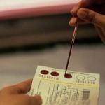 Моноциты в клиническом анализе крови