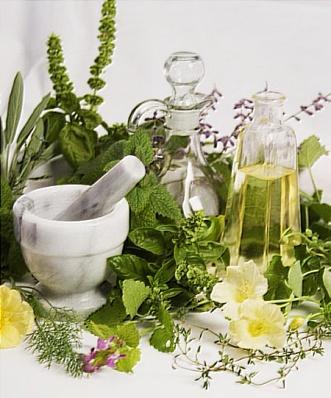Какие травы при миоме матки рекомендует народная медицина