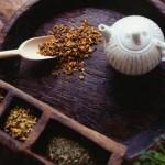 Что такое лечение фитотерапией — лечение лекарствами