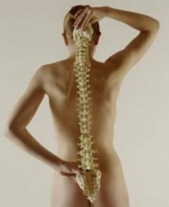 Повреждение спинного мозга: классификация травм