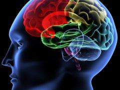Воспаление мозгов — виды и симптомы заболеваний