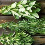 Название лечебных трав для их правильного применения и сбора
