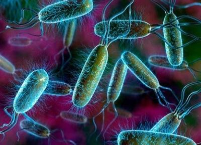 Каковы причины дисбактериоза и признаки его проявления