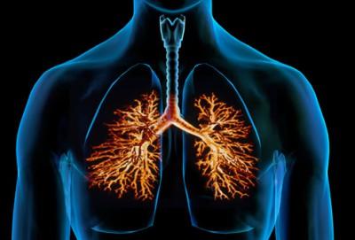 Бронхит. Лечение грудного кашля