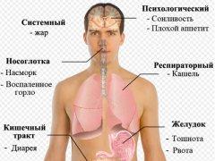 Свиной грип
