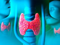 Где появляются метастазы при раке щитовидной железы