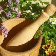Как сдать лекарственные травы?