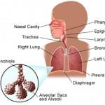 Стабильное течение пневмонии с ранних стадий