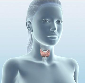 Пониженная функция щитовидной железы и её причины