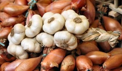 Несколько  фактов итальянской кухни