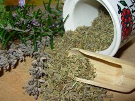 Для лечения почек эффективно применять народные средства с использованием трав