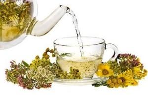 Любителям народной медицины подойдут для лечения различные травяные сборы