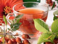 Травы в практике лечения панкреатита