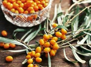 В облепихе содержаться практически все витамины и микроэлементы