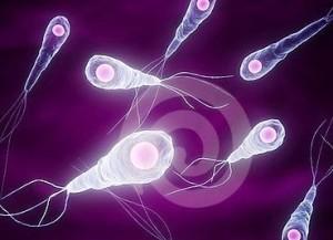 От момента проникновения бактерии до начала ее развития может пройти несколько дней