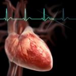 ВПС: двухстворчатый аортальный клапан. Симптомы и диагностика