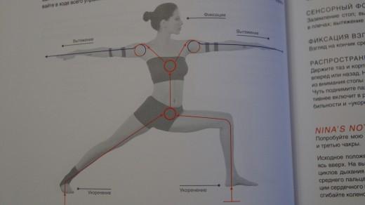 Понимание хатха-йоги