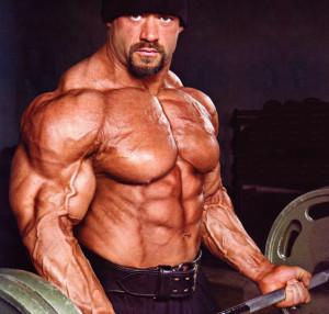 В силовых тренировках важную роль играют именно мышцы – антагонисты