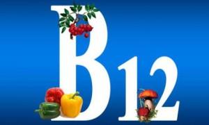 Среди всех витаминов одним из самых важных является витамин В12, который необходим для нормального кроветворения и слаженной работы нервной системы