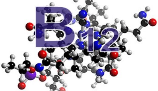 Суточная норма витамина В12