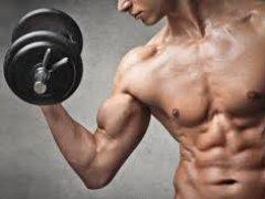 Разговор о сокровенном: повышение тестостерона у мужчин народными средствами