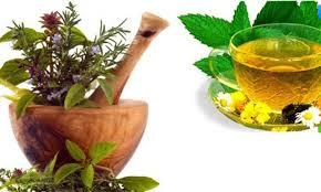 Травяные настои и отвары широко используются для лечения полипов кишечника