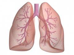 Бронхит и пневмония: в чем отличие