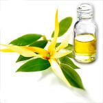 Дотронемся к природе: эфирное масло иланг-иланг для волос