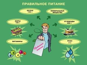 Для организма человека важны все питательные элементы
