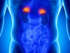 Киста надпочечника: основные симптомы недуга