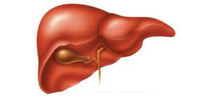 Диагностические процедуры проводятся только на голодный желудок