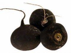 Черная редька: рецепты от кашля с медом