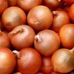 Сколько калорий в луке: энергетическая ценность и полезные свойства
