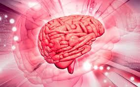 Препарат Цитофлавин назначается при нарушениях мозгового кровообращения