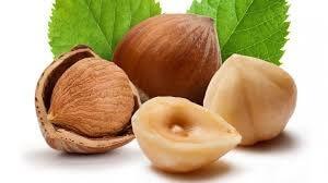 Фундук в своем составе содержит много питательных веществ