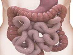 Чистка кишечника в домашних условиях без клизмы: эффективные способы