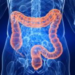 Воспаления двенадцатиперстной кишки: симптомы недуга