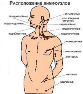 Где расположены лимфоузлы в коленном суставе оборазование солей в коленном суставе