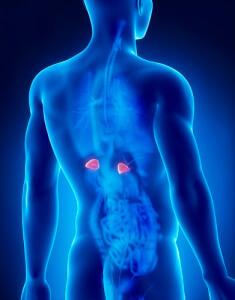 Основные признаки и симптомы опухоли надпочечников