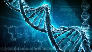 Сегодня выявлено множество заболеваний, причиной которых являются генетические отклонения