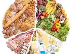 Список продуктов, содержащих белок растительного и животного происхождения