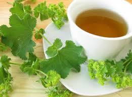 Травяной чай применяют при диабете