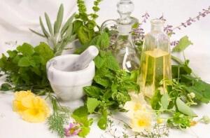 Эффективное средство лечения недуга - настои и отвары целебных трав
