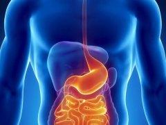Не переваренная пища в кале у взрослого: причины и лечение патологии