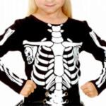 Сколько костей в организме человека: занимательная анатомия