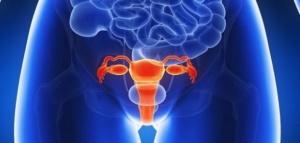 Подострый вагинит: причины недуга, лечение