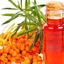Лечение язвы желудка облепиховым маслом: правила применения