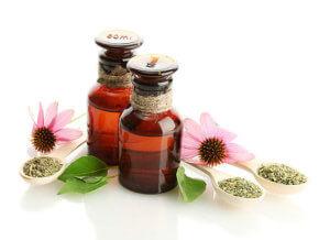 Настойка эхинацеи -эффективный растительный препарат